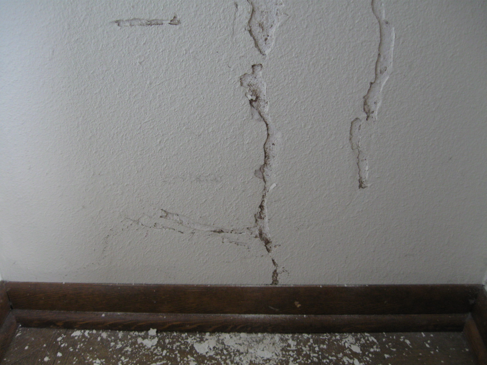 Termite Bites Termite Signs Drywall